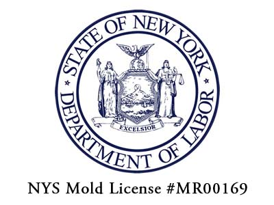 NYS Mold License